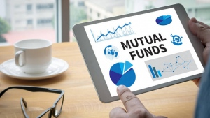 Statements That Every Mutual Fund Investor Should Remember